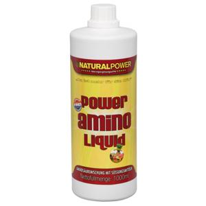 Natural Power Amino Liquid Review